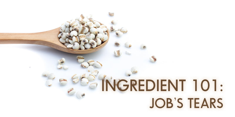 Skincare Ingredient 101: Job's Tears / Pearl Barley