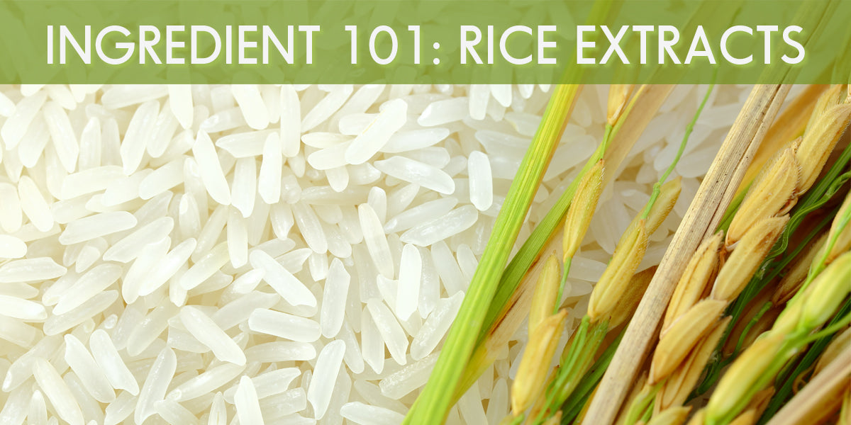 Asian Skincare Ingredient 101: Rice Extracts