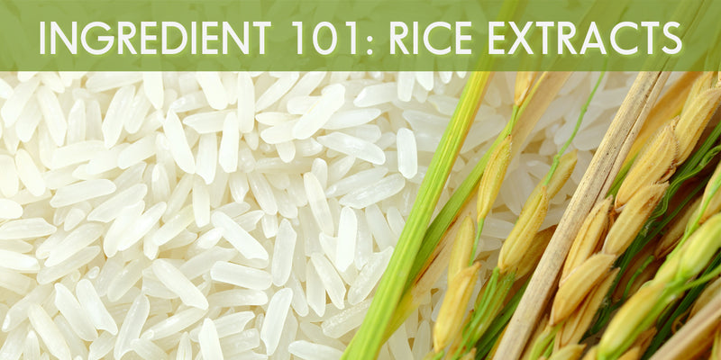Rice, Rice, Baby: The Best of Rice Extracts in Asian Beauty