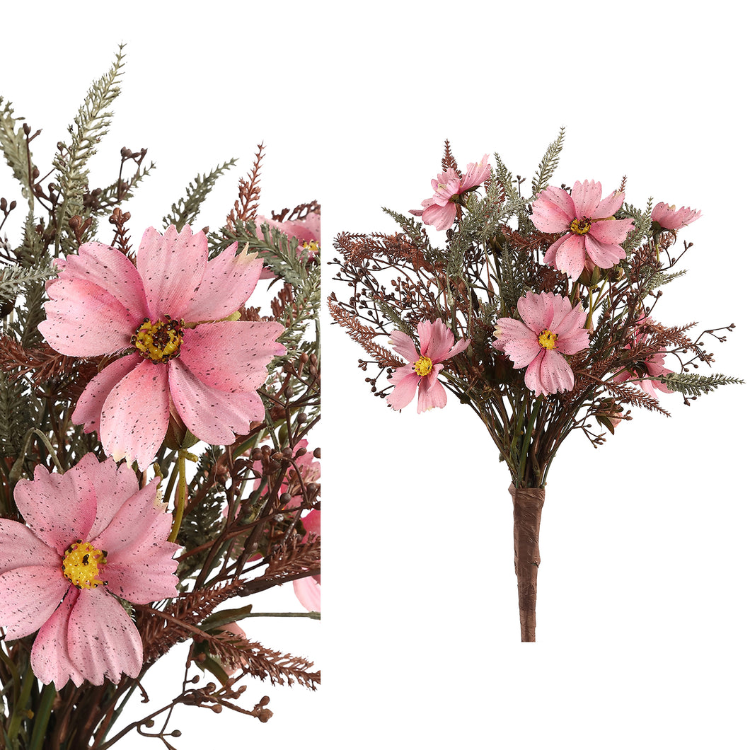 PTMD - Garden Flower pink fall cosmos fern leaf bush