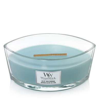 WoodWick - Blue Java Banana Ellipse