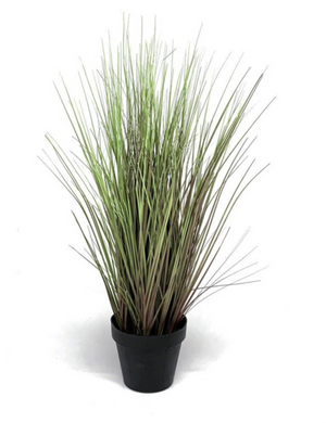 Mansion - Grass plant 58cm