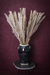 PTMD - Dried Leaves brown natural pampas grass L
