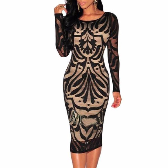 Women's Round Neck Mid Back Sheer Lace Long Sleeve Bodycon Dress Black
