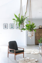 Our macrame plant hangers are designed to display your indoor plants with unique flair. flower plant hanger. jute plant hanger. macrame plant hanger. hanging plants.
