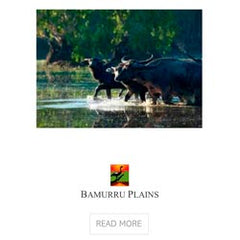 Bamurra Plains use Ecodownunder Bed Linen and Bath Towels at their eco resort