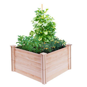 Cedar Raised Garden Bed 4 ft x 4 ft x 21 in RC44C22