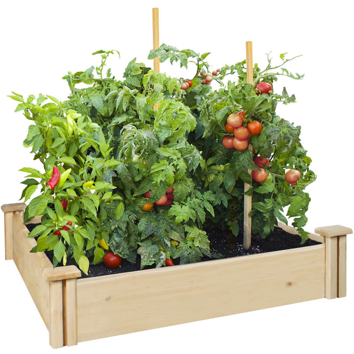 Premium Cedar Raised Garden Bed 42 in x 42 in x 5.5 in RC6C42