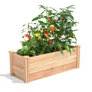 Premium Cedar Raised Garden Bed 16 in x 4 ft x 16.5 in RC164818P
