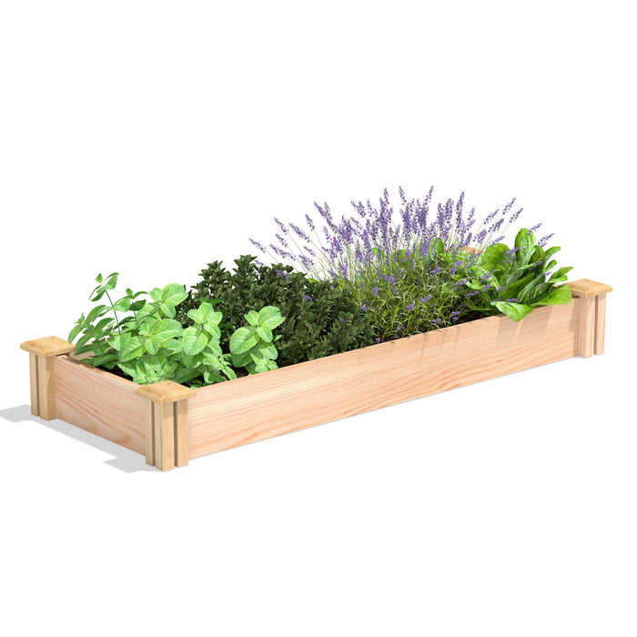 Premium Cedar Raised Garden Bed 16 in x 4 ft x 5.5 in RC16486P