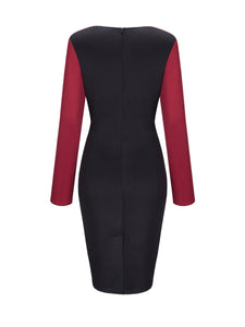 Cowl Neck Color Block Long Sleeve Bodycon Dress