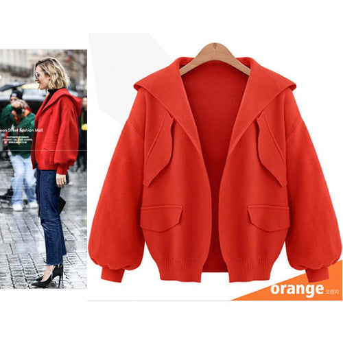 Hooded Simple Fashion Coat