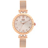Gio Collection Silver Dial Women's Watch - G2043-44