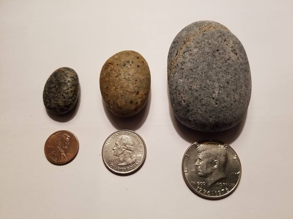 Size comparison of Yooperlites