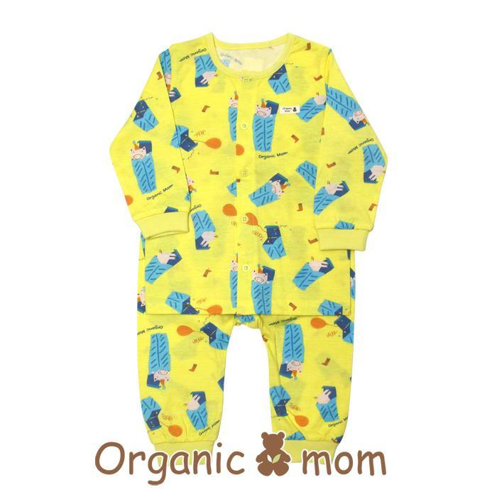 Aiden Painter Toddler PJ (SPRING)