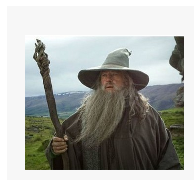 Harry Potter Albus Dumbledore Cosplay Wig Mustache