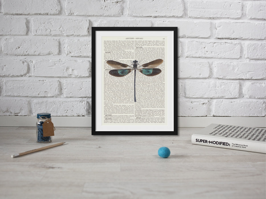 Dragonfly Illustration Wall Hanging printed onto vintage dictionary paper