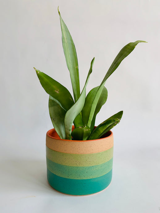Green Sunset Planter
