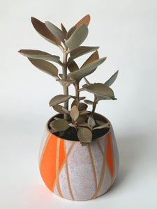 Strings Planter, Colors