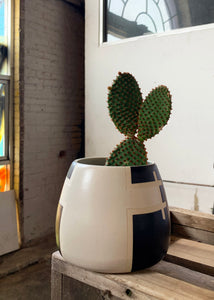 Ghost Saguaro Planter