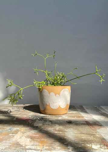 White Cloud Planter