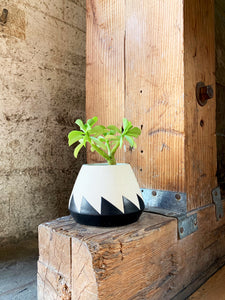 Sawtooth Planter