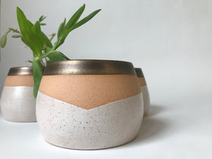 Special Edition V-Neck Planter: White and Gold