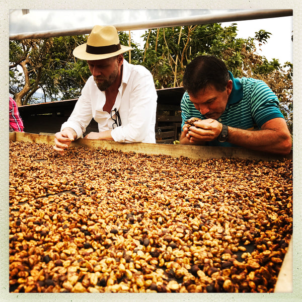 Great Coffee Trip to Costa Rica