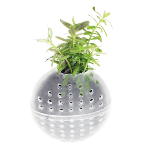 NPOD Underwater Planter - Single Pack