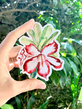 Load image into Gallery viewer, Desert Rose Sticker