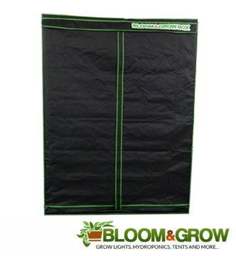 BLOOM & GROW BOX 140X140X200