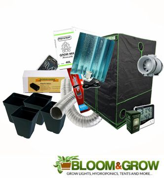 80X80X180 BLOOM & GROW STARTER KIT