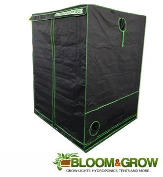 BLOOM & GROW BOX 240X240X200