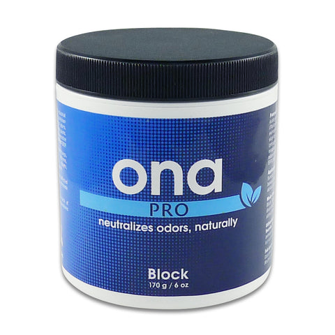 Image of ONA Block (various tastes)