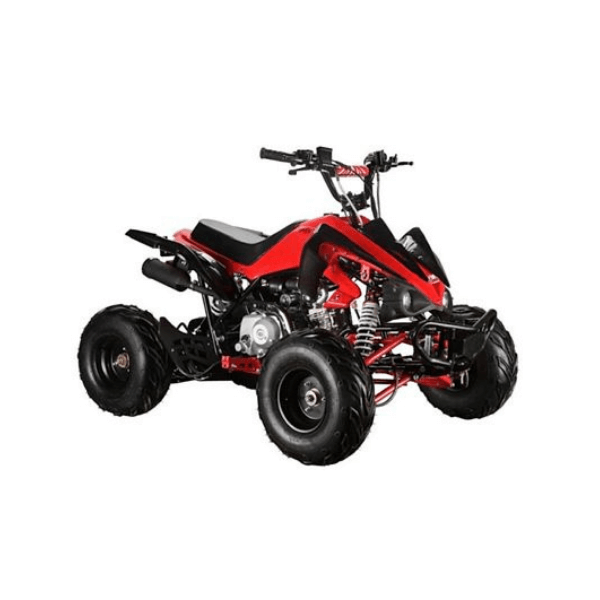 Mega Wheels 125 cc Panther Atv Quad Bike with Reverse/Without Reverse