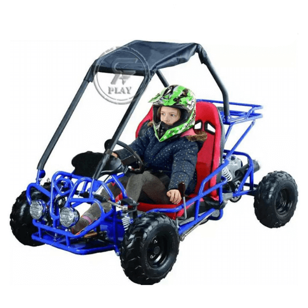 RAF Off Road Fuel Go Kart Buggy 110 cc - MGA STAR MARKETING