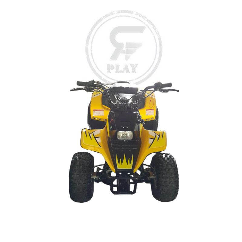 Fuel /  Power Atvs & Quads - ROMPER 125 cc