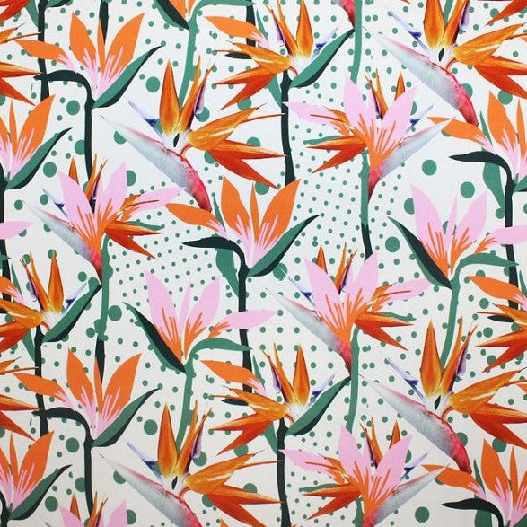 A flat sample of dotted birds of paradise printed spandex.