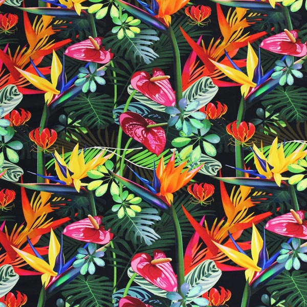 Multi Color Birds Of Paradise Printed Spandex