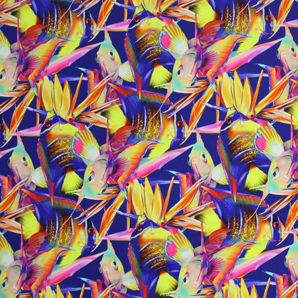 A flat sample of Tropical Fish Birds of Paradise Printed Spandex.