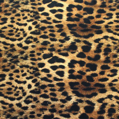 A flat sample of Leopard Spotted Safari Printed Spandex.