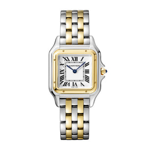 Panthère de Cartier Medium Steel and Yellow Gold Watch