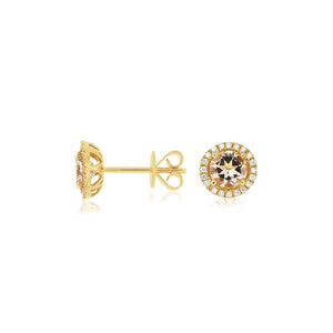 Sabel Collection 14K Yellow Gold Round Morganite and Diamond Stud Earrings