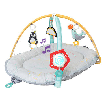Musical Newborn Cosy Gym