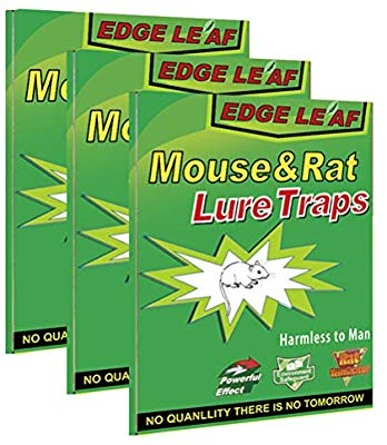3 Pack Edge Leaf Mouse and Rat Lure Trap