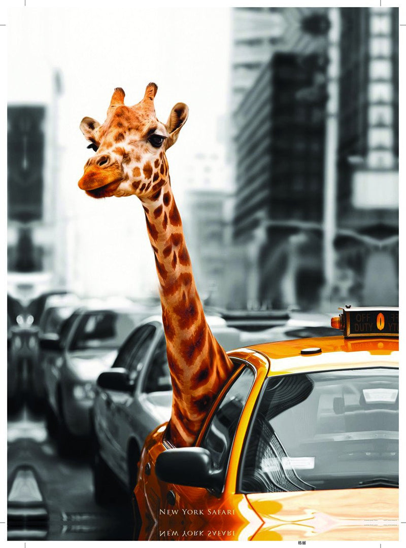 50CM x 70CM New York Safari Canvas Print - iDealDirect - 2
