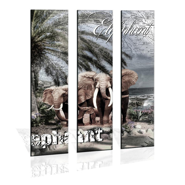 Canvas Prints - 90CM X 120CM 3 Panel Canvas Elephant Prints