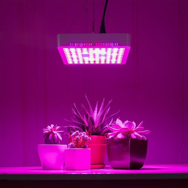 1000W LED Indoor Plant Growing Light