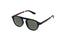 Superdry Sunglasses - Brookfield 106