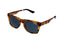 Superdry Sunglasses - Cali 122
